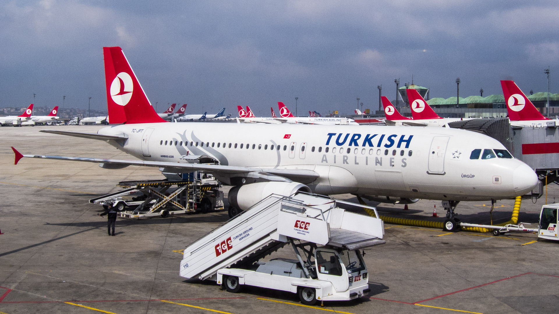 Turkish Airlines golfbag