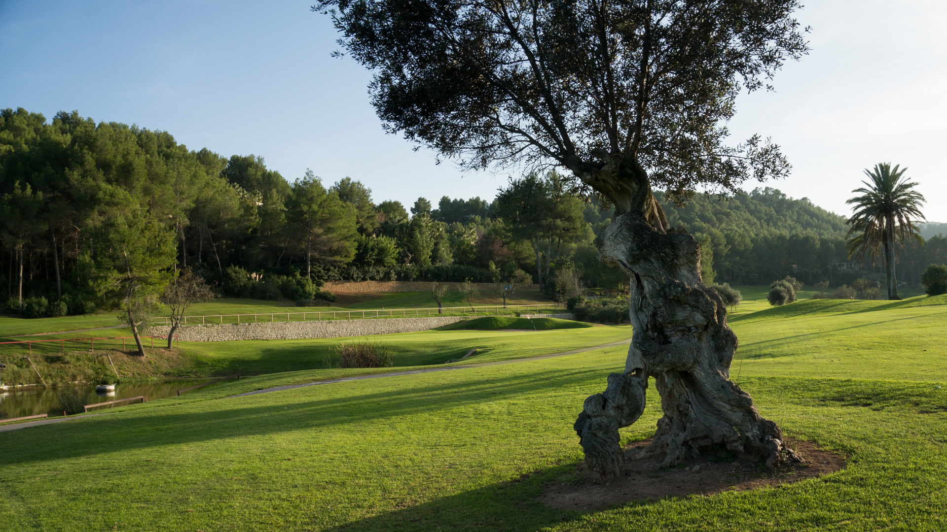 Mallorca golf weekend på Golf Son Vida, Arabella Golf
