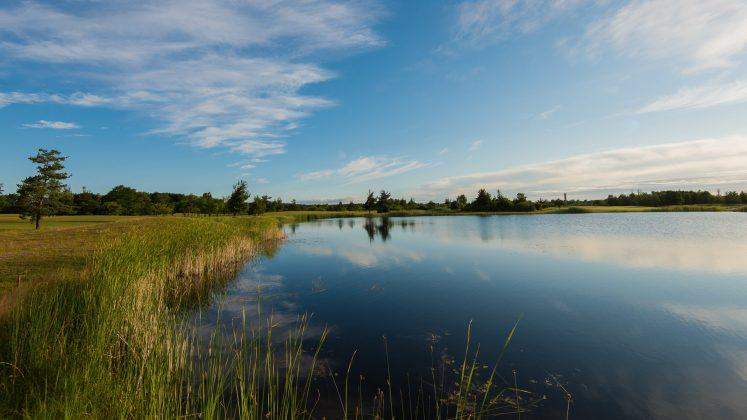 Saare Golf Club, Ösel, Estland.